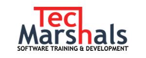 tech-marshals-logo-2